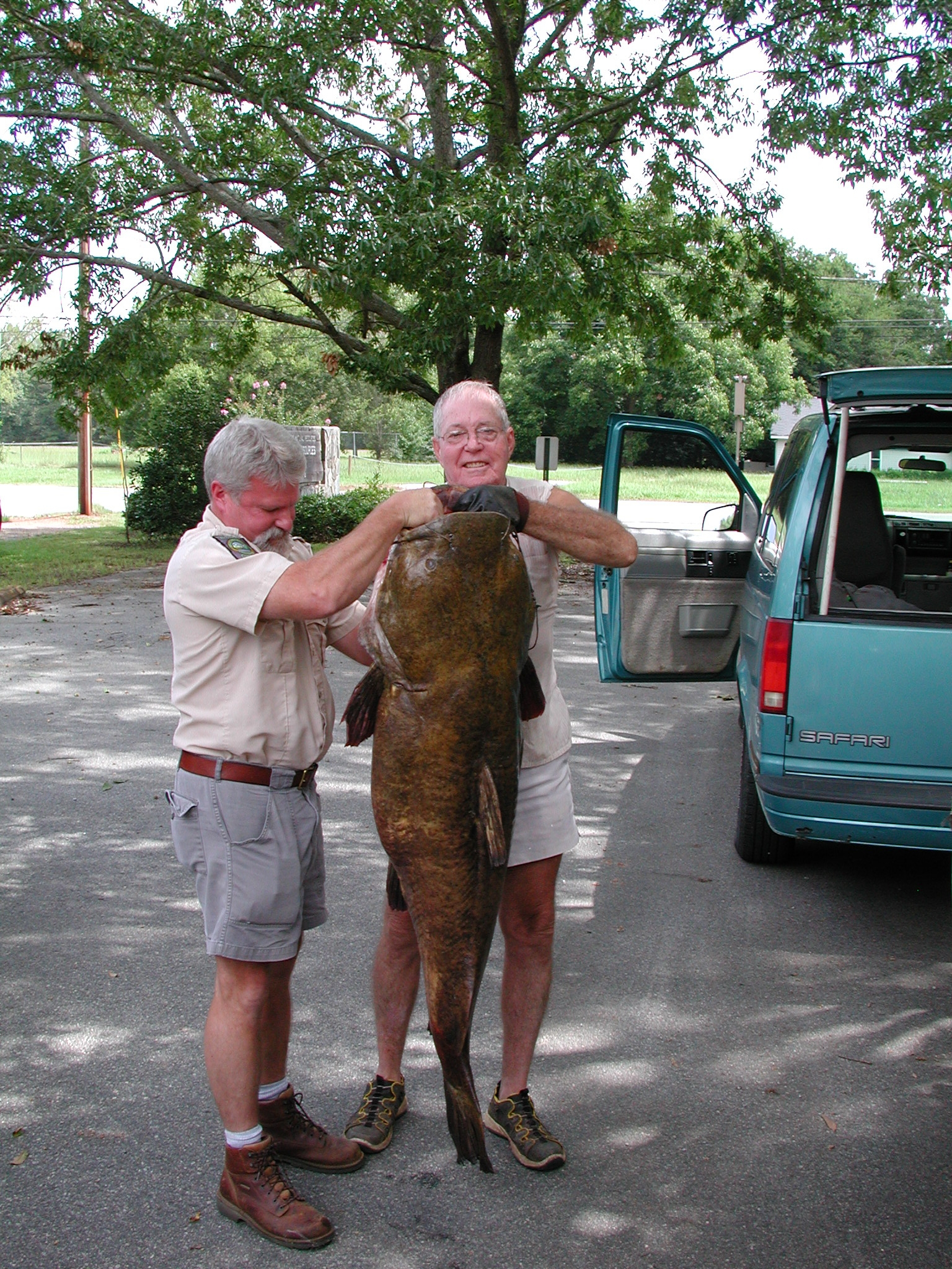 Why fish georgia flathead catfish in altamaha river up to 100 pounds sciox Image collections