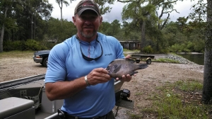 Jamie Hodge and a friend caught 42 fish in the Satilla River, including this giant bluegill.
