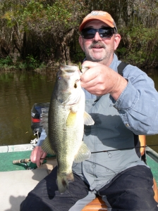 Dr. Mike VanDenAvyle from Athens, Georgia visited Waycross this week. The big fish of his visit was this 3-pound Altamaha River bass.