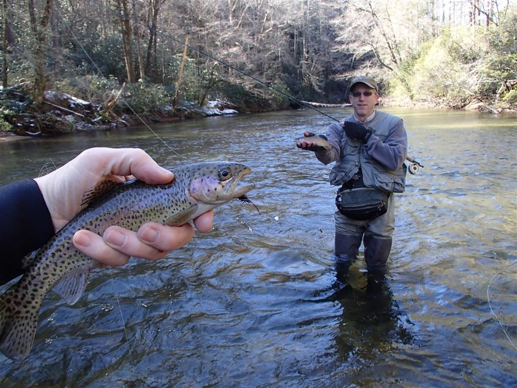 Wildlife georgia wildlife resources division for Blue creek fishing report