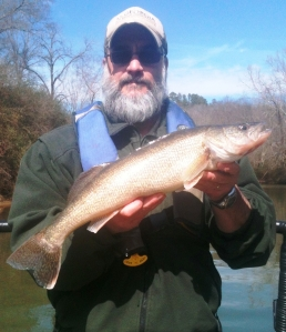 Fisheries technician Tony Anderson with a 4-pound walleye collected while sampling on Lanier.