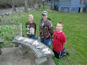 Nice take of trout caught by these three boys last April.