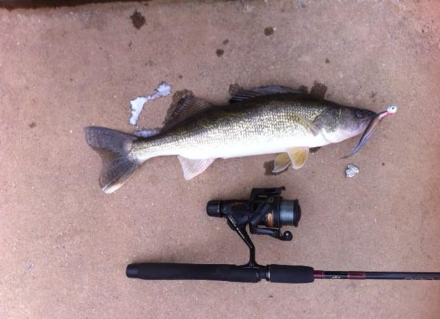 Lake allatoona fishing regulations for Georgia fishing regulations