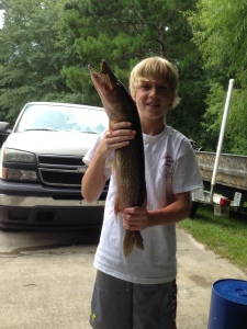 Kason Buie of Brunswick caught this giant pickerel (jackfish) from an oxbow lake off the lower Altamaha River last weekend.
