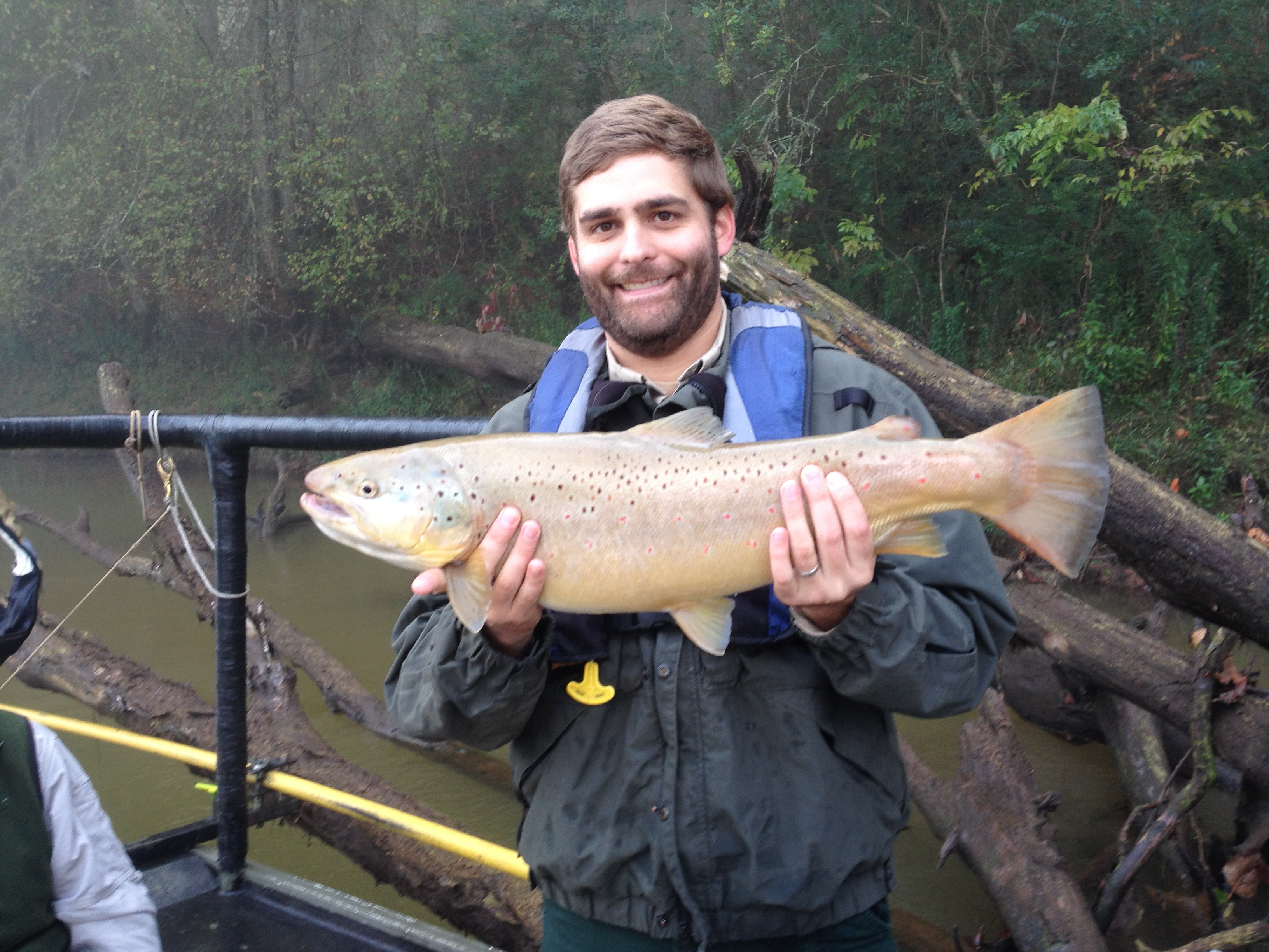 North georgia fishing report oct 24 2014 for Trout fishing in ga