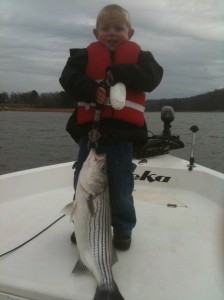 Lake Lanier winter striper.