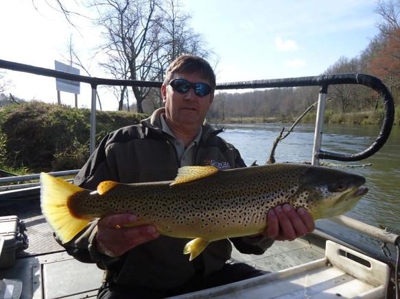trout Brown 9.5lbs Blue Ridge TW  3_23_16
