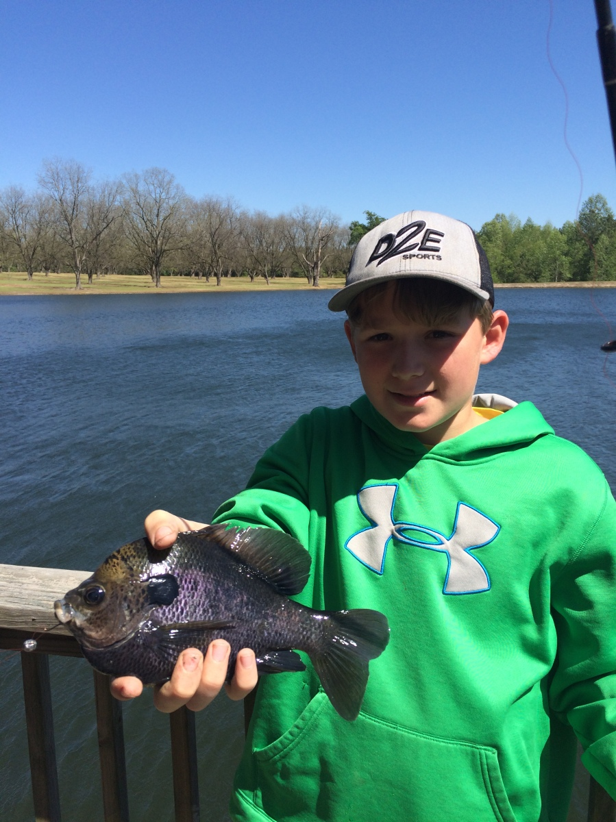Lane Steedley caught this quality bluegill using a cricket in a McRae area pond. Bluegills should be chowing in area ponds and the St. Marys River this weekend.