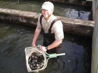 summerville trout netful Kris Apr 2016 small