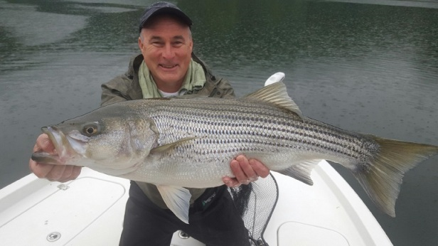 striper Dennis_McKeon_Carters_Lake