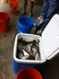 crappie-nga-club-weigh-in-at-sherrys-oct2016-pic2