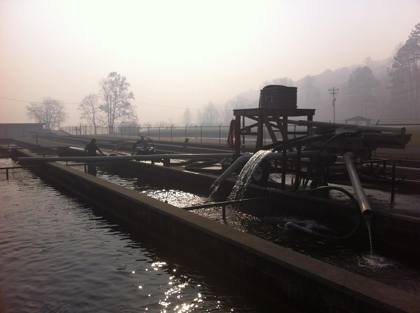 burton-hat-morning-smoke-11-15-16-resized