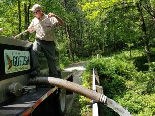 trout stocking JLT Holcomb Creek spring 2018
